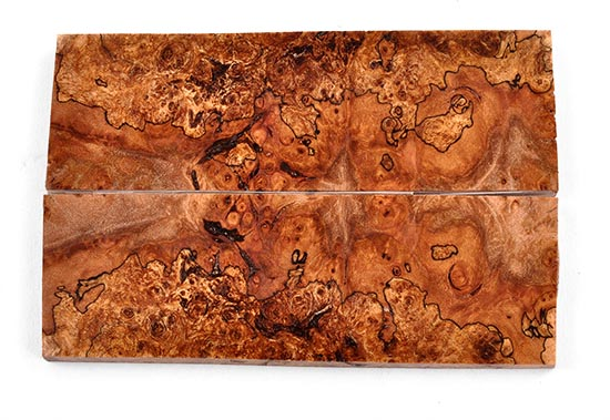 Spalted Maple Burl Spalted Maple Burl Scales