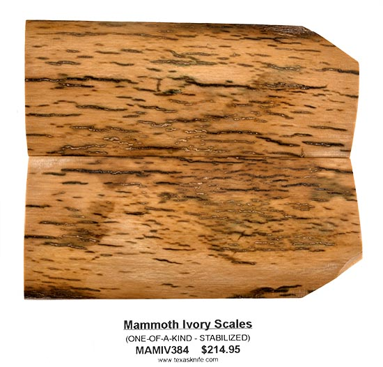 Fossilized Mammoth Ivory Scales -- Only One Available!